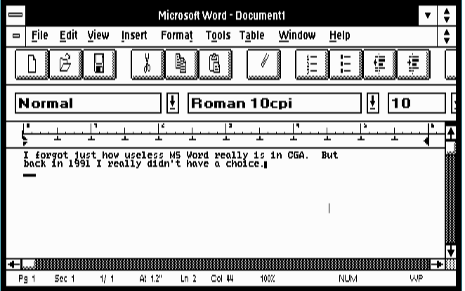 MS Word 2.0